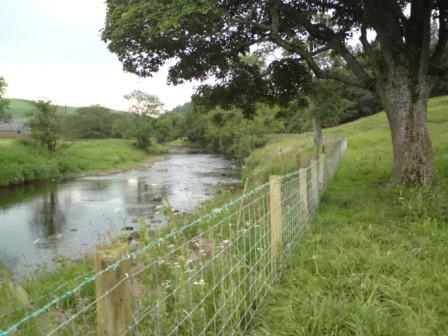 fencing-protecting-river-bank